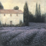 Lavender Field Detail Giclee Print by James Wiens
