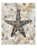 Pearlized Starfish Prints by  Regina-Andrew Design