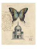 Butterfly Etching Kunstdruck von Chad Barrett