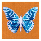 Orange Pop Butterfly Print by Christine Caldwell