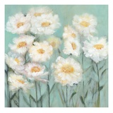 White Poppies 1 Giclee Print by Olivia Long