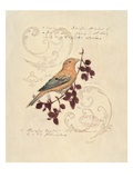 Filigree Songbird Giclee Print by Chad Barrett