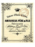 French Document 4 Giclee Print by  Z Studio