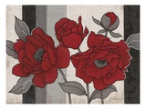 Roses and Stripes 2 Giclee Print by Ariane Martine