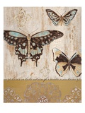 Butterfly Transformation Premium Giclee Print by  Studio 5