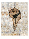 Pearlized Shell Giclee Print by  Regina-Andrew Design