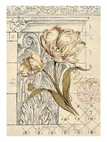 Tulip Etching Giclee Print by Chad Barrett