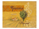 Toscana Harvest Giclee Print by Angela Staehling