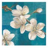 Blossom Branch Giclee Print by Jurgen Gottschlag