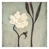 Ivory Bloom Prints by  Ivo
