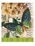 Bountiful Butterfly 2 Prints by Walter Robertson