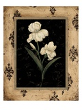 Silver Iris Giclee Print by Regina-Andrew Design 