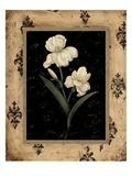 Silver Iris Print by  Regina-Andrew Design