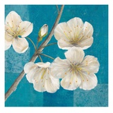Blossom Bough Posters by Jurgen Gottschlag