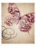 Vintage Heart 1 Plakater af Marco Fabiano