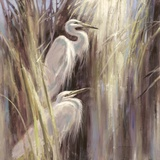 Seaside Egrets Print by Brent Heighton