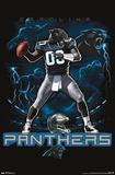 Carolina Panthers Quarterback Mascot Photo
