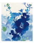 Stream of Blues 2 Premium Giclee Print by Bella Dos Santos