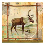 Elk Nature Giclee Print by Walter Robertson