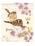 Treasured Nest Giclee Print by Colleen Sarah