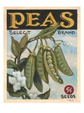 Fresh Peas Giclee Print by K. Tobin