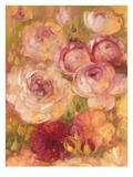 Abundance 2 Giclee Print by Vera Hills