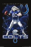 Indianapolis Colts Quarterback Mascot Posters