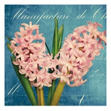 Fresh Bouquet with Text 2 Giclee Print by Cristin Atria