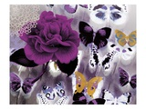 Butterfly Collage Magenta Reproduction proc&#233;d&#233; gicl&#233;e par Evangeline Taylor