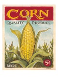Fresh Corn Giclee Print by K. Tobin