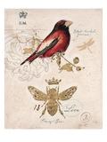 Ruby Collection 5 Poster von Chad Barrett