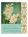Floral Souvenir 2 Prints by Cristin Atria