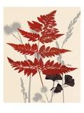 Spring Fern 1 Prints by Bella Dos Santos