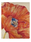 Tangerine Bloom 1 Giclee Print by  Bouchet