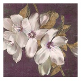 Plum Blossoms 2 Giclee Print by Jurgen Gottschlag