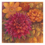 Autumn Dahlias 1 Posters by Vera Hills