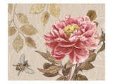 Bumble Bee and Peony Prints by Chad Barrett