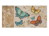 Butterfly Gathering Giclee Print by Chad Barrett