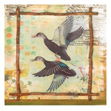 Duck Nature Giclee Print by Walter Robertson