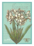 Floraison Nouveau 1 Posters par Devon Ross