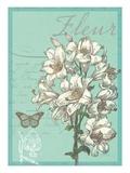 Fleur Nouveau Reproduction giclée Premium par Devon Ross