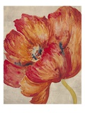 Tangerine Bloom 2 Prints by Linza Bouchet