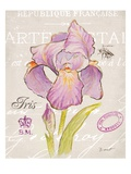 Sketchbook Iris Prints by Chad Barrett