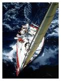 Sailboat racing, Miami Posters by Sharon Green