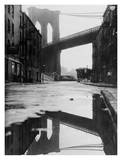 Reflecting Brooklyn Bridge Prints
