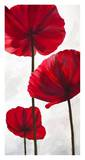 Reds III Art by Luca Villa