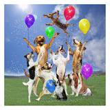 Dogs partying Art by  Lund-Roeser