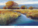 Calming Stream Posters by Amanda Houston