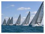 Racing sailboats in a row Prints by Sharon Green
