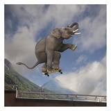 Elephant skateboarding Prints by  Lund-Roeser